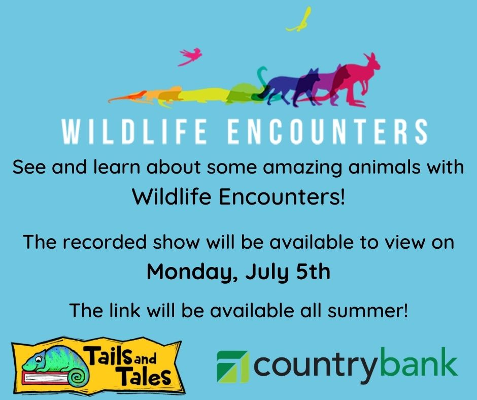 This image has an empty alt attribute; its file name is Learn-about-some-cool-animals-with-Wildlife-Encounters-Recorded-show-will-be-available-to-view-Monday-July-5th-The-link-will-be-available-all-summer.jpg